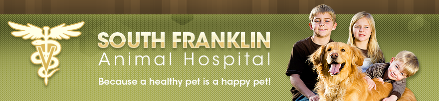 south frankling animal hospital